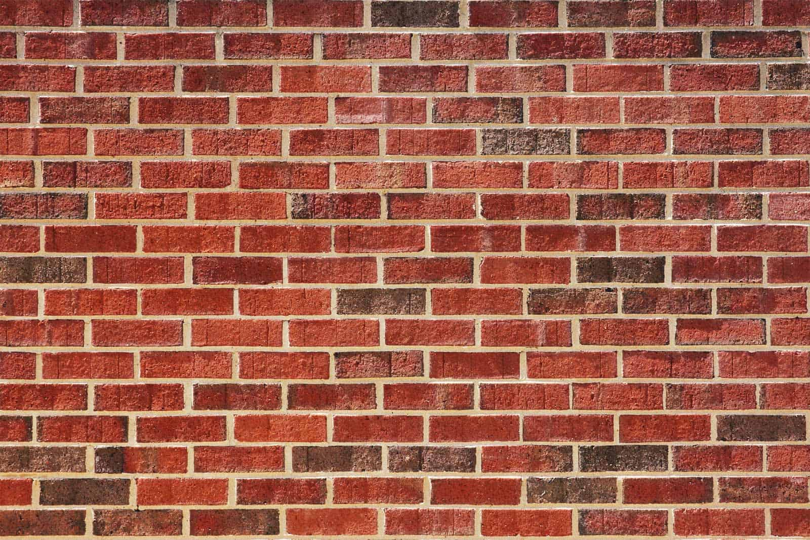 Great Wall Of Tiles Ideas - The Best Bathroom Ideas - lapoup.com
