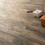 Ceramic Floor Tiles 2014